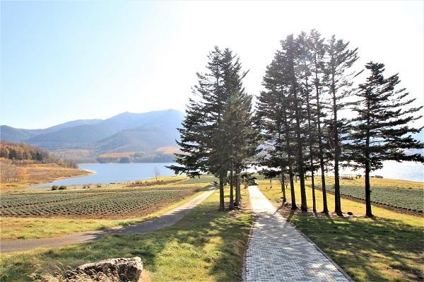北海道「かなやま湖畔」