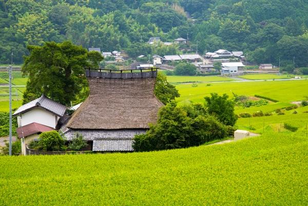 能勢町の田園風景