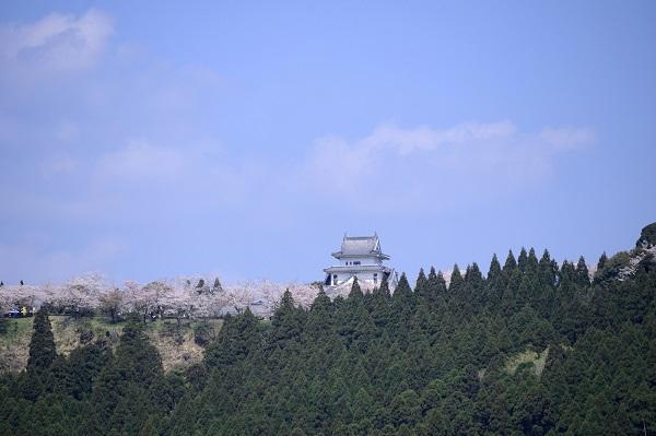 宮崎県「天ケ城公園」