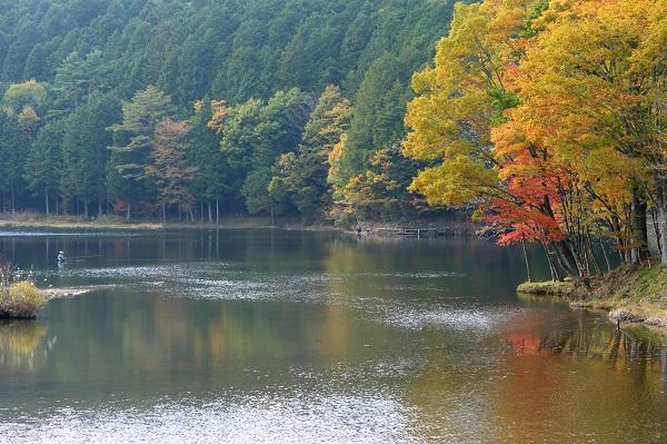 愛知県「段戸湖ルアー・フライ管理釣り場」