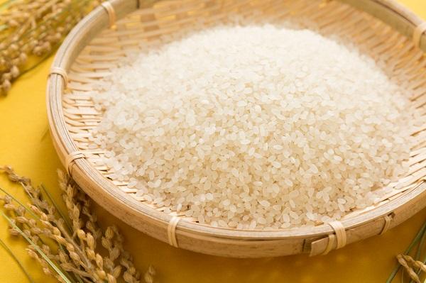 愛知県「豊根村のお米」