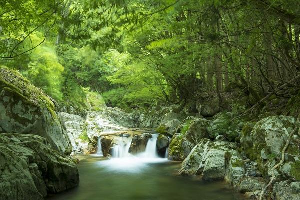 兵庫県「赤西渓谷」