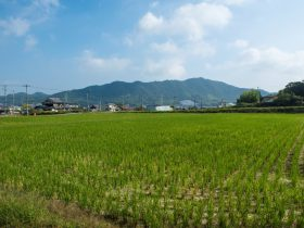 加東市の田園風景