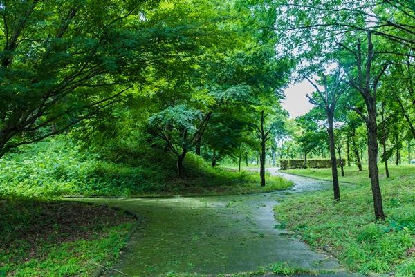 日本のへそ公園