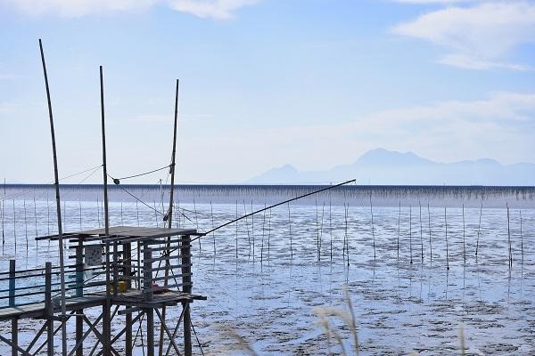 佐賀県「有明海の干潟」