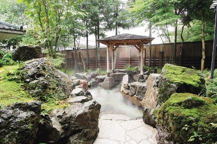 hanahasu_spring