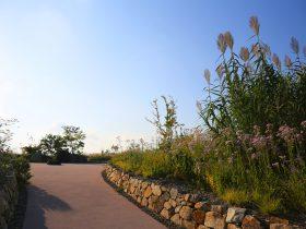 湖山池ナチュラルガーデン