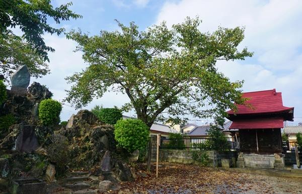 杉戸宿の浅間神社