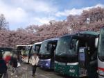 観光バスと青空