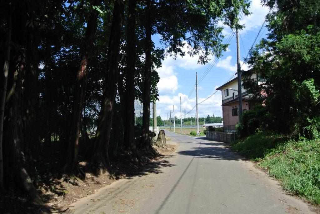 狭い道もプロの技術でスイスイ