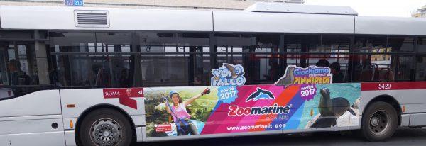 車両側面の部分的ラッピングバス例(2):水族館兼テーマパークの宣伝