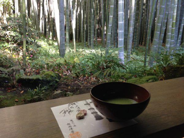 竹の庭でいつぷく