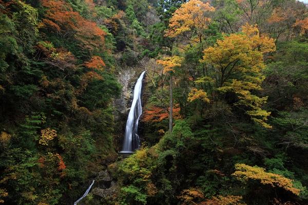 兵庫県「原不動滝」