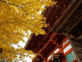 奈良・吉野水分神社