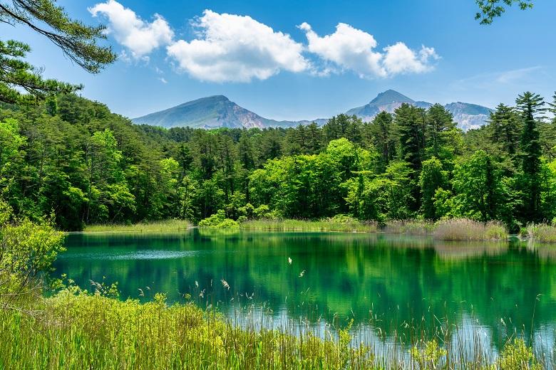 五色沼自然探勝路の新緑風景 るり沼と磐梯山