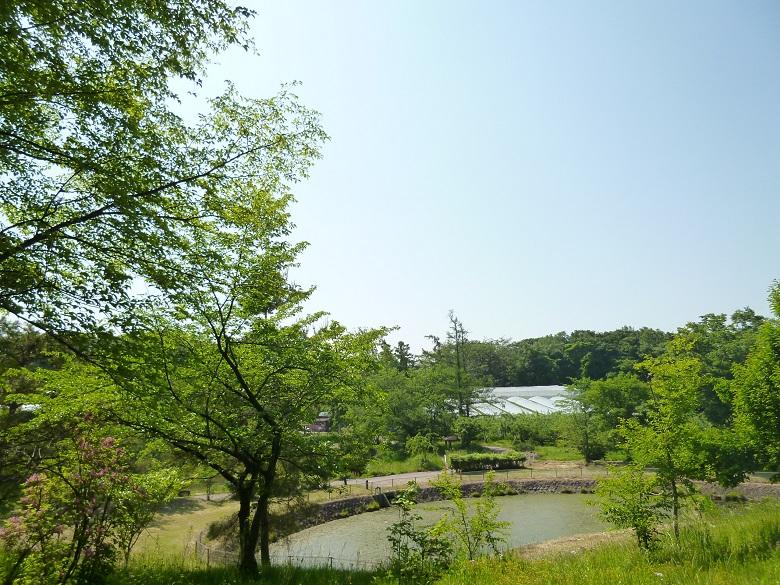 北信濃ふるさとの森文化公園
